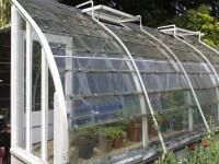 Bez znajomości języka praca we Francji w ogrodnictwie przy pomidorach w szklarni