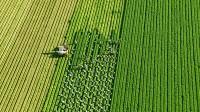 Oferta pracy w Niemczech przy zbiorach warzyw od zaraz bez języka Lipsk