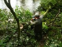 Leśnictwo od zaraz oferta pracy w Niemczech przy wycince drzew Niedersachsen