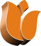 Holandia praca fizyczna na produkcji w fabryce kartonu od zaraz Roosendaal