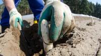Luckenwalde zbiory szparagów Niemcy praca sezonowa bez języka od zaraz