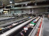 Ogłoszenie fizycznej pracy w Niemczech bez znajomości języka Hamburg przy recyklingu