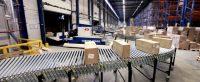 Fizyczna praca Holandia od zaraz przy rozładunku kontenerów bez języka Roosendaal