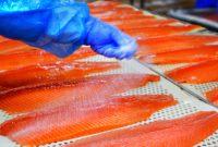 Ogłoszenie fizycznej pracy w Danii od zaraz przy filetowaniu ryb bez języka Glostrup