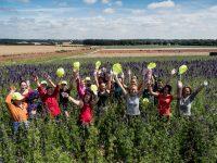 Anglia praca sezonowa w ogrodnictwie przy kwiatach bez języka na farmie od zaraz, Shropshire
