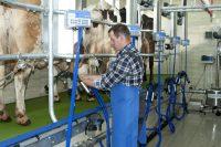 Sezonowa praca w Szwecji w rolnictwie jako dojarz-pracownik gospodarstwa rolnego 2019
