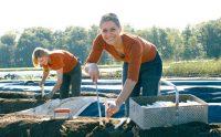 Od kwietnia 2020 sezonowa praca w Holandii bez języka zbiory szparagów Venlo
