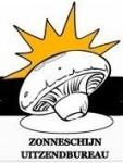 Sezonowa praca w Holandii – Zbieranie i sortowanie pieczarek Eindhoven