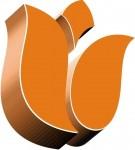 Oferta pracy w Holandii na budowie w Rotterdam – MONTER PŁYT K/G OD ZARAZ